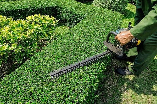 gardener-sintirisi-kipou